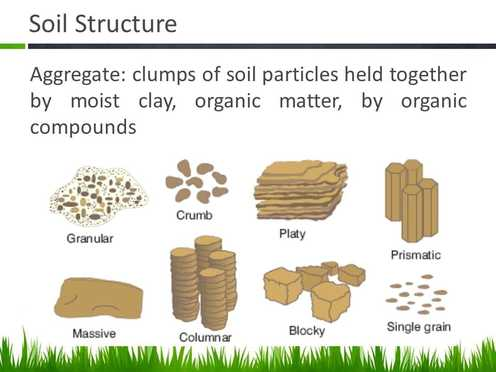 Soils sustain life for Meaning of soil resources